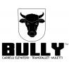 Bully Forklift